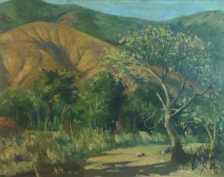 First painting of Cerro El Avila by Alvarez de Lugo.